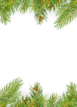 abeto: Navidad marco verde aislado sobre fondo blanco