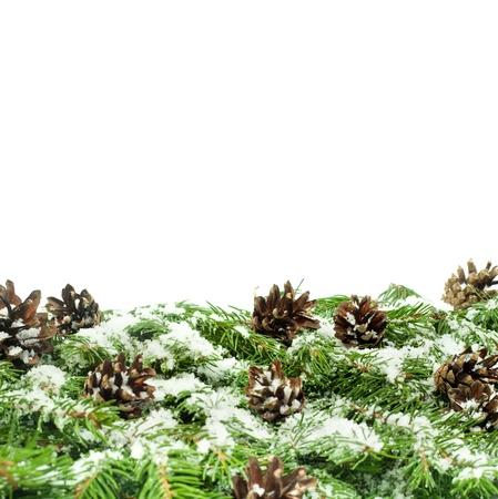 Vánoční pozadí se sněhem, a kužely na bílém Reklamní fotografie