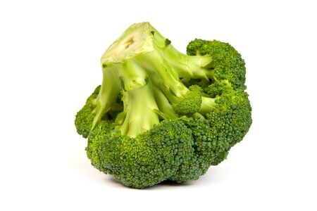 Single broccoli floret isolated on white background with soft drop shadow. Stock Photo - 15636777