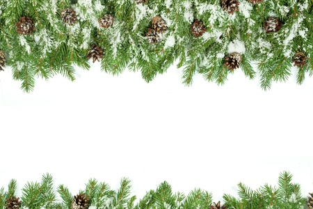 Christmas background with snow, and cones isolated on white Stock Photo - 15767268