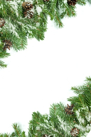 Christmas background with snow, and cones isolated on white Stock Photo - 15767272