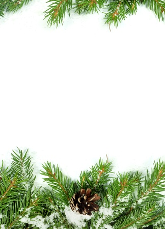 Christmas background with snow, and cones isolated on white Stock Photo - 15767230