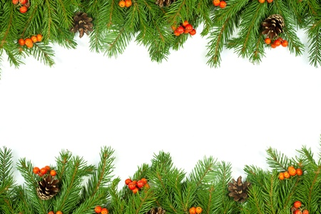 Christmas green  framework with cones and holly berry  isolated on white background Stock Photo