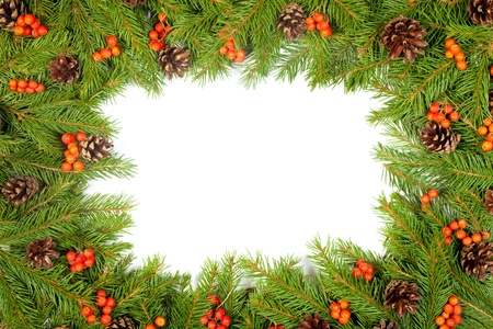 Christmas green  framework with cones and holly berry  isolated on white background photo