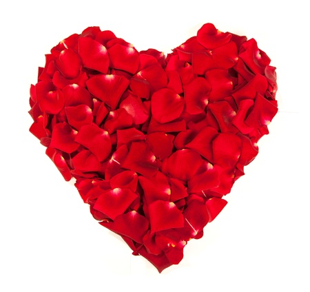 Heart shape made out of rose petals isolated on white photo