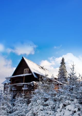 log cabin in snow: Idyllic photo of a mountain house during the winter.