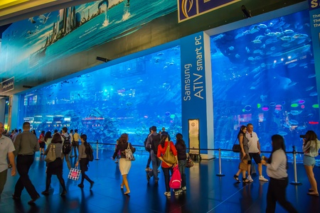 DUBAI, UAE - NOVEMBER 14: Aquarium in Dubai Mall - world's largest shopping mall , Downtown Burj Dubai November 14, 2012 in Dubai, United Arab Emirates