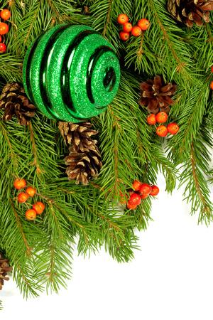 hollyberry: Christmas green framework isolated on white background