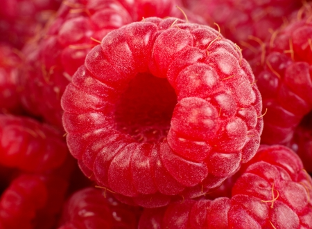 Background of ripe red raspberries, Close up macro shot photo