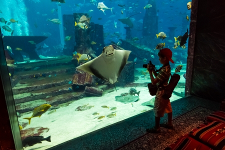 DUBAI, UAE - SEPTEMBER 30: Large aquarium in Hotel Atlantis (1,539 spacious guest rooms including 166 suites) on man-made island of Palm Jumeirah at September 30, 2012 in Dubai, United Arab Emirates. photo