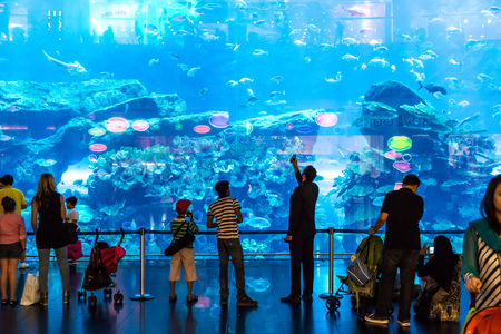 DUBAI, UAE - NOVEMBER 14: Aquarium in Dubai Mall - worlds largest shopping mall , Downtown Burj Dubai November 14, 2012 in Dubai, United Arab Emirates