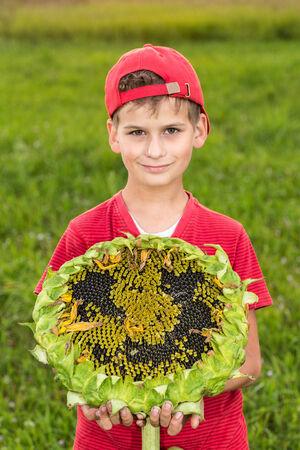 Cute happy boy hold sunflower in a summer garden photo
