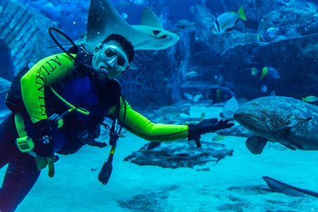 DUBAI, UAE - SEPTEMBER 30: Large aquarium in Hotel Atlantis (1,539 spacious guest rooms including 166 suites) on man-made island of Palm Jumeirah at September 30, 2012 in Dubai, United Arab Emirates.