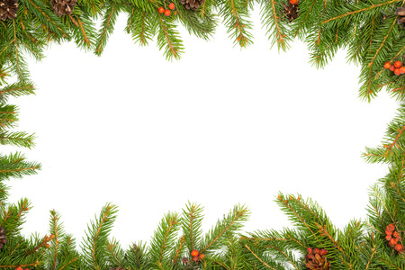 holly berry: Christmas green  framework with cones and holly berry  isolated on white  Stock Photo