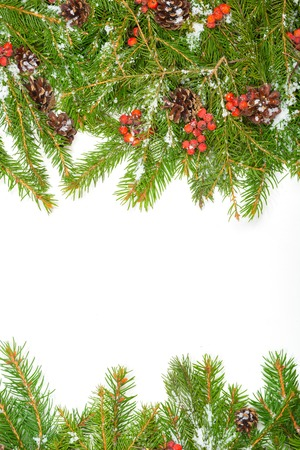 hollyberry: Christmas with snow, cones and holly berry isolated on white