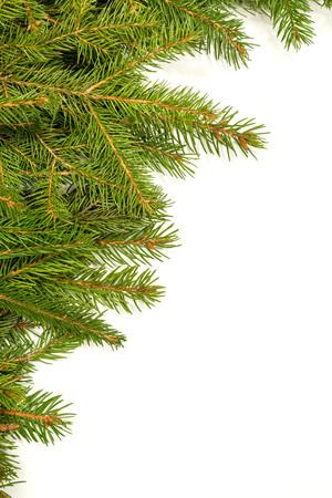framework: Christmas green framework isolated on white background
