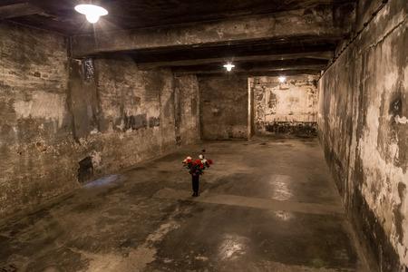 auschwitz: Crematorium in Auschwitz is the biggest nazi concentration camp in Europe Editorial
