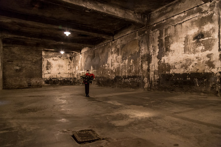 crematorium: Crematorium in Auschwitz is the biggest nazi concentration camp in Europe Editorial