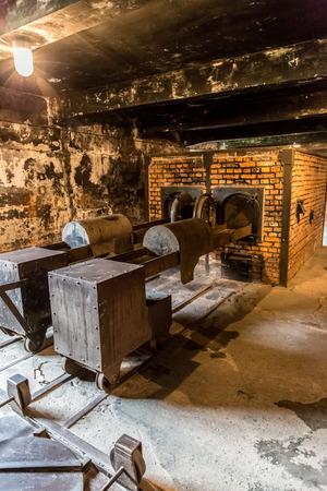 auschwitz memorial: Crematorium in Auschwitz is the biggest nazi concentration camp in Europe Editorial