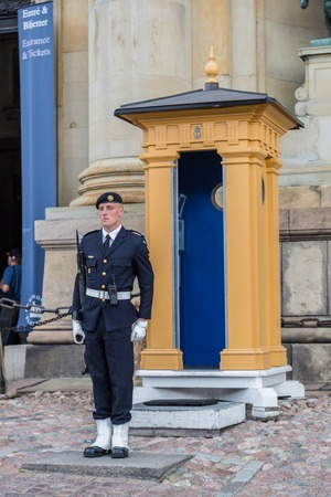 family units: STOCKHOLM, SWEDEN - AUG 25,2014:Royal Guards,Main Guard at Palace is carried out by units of Swedish Armed Forces.It is King of Sweden guard of honour and is responsible for protection of Royal Family