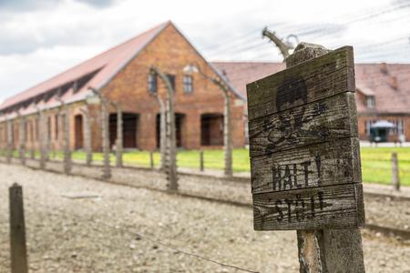 auschwitz memorial: German concentration camp Auschwitz in Poland in summer day Editorial