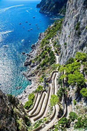 twisty: Patch on a Capri island in a beautiful summer day in Italy