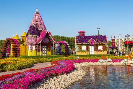 DUBAI, UAE - NOVEMBER 24 : Dubai miracle garden with over 45 million flowers in a sunny day on November 24, 2015, United Arab Emirates
