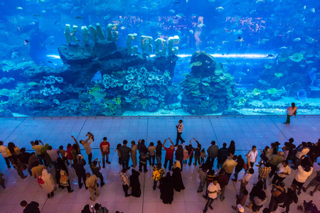 sea life centre: DUBAI, UAE - DECEMBER 5: Aquarium in Dubai Mall - worlds largest shopping mall, UAE. December 5, 2015 in Dubai, United Arab Emirates Editorial