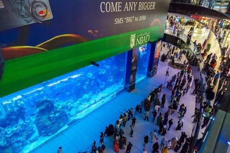 mall of the emirates: DUBAI, UAE - DECEMBER 5: Aquarium in Dubai Mall - worlds largest shopping mall, UAE. December 5, 2015 in Dubai, United Arab Emirates Editorial