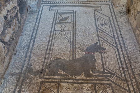 The black mosaic dog in Pompeii city destroyed in 79BC by the eruption of volcano Vesuvius, Italy in a beautiful summer day