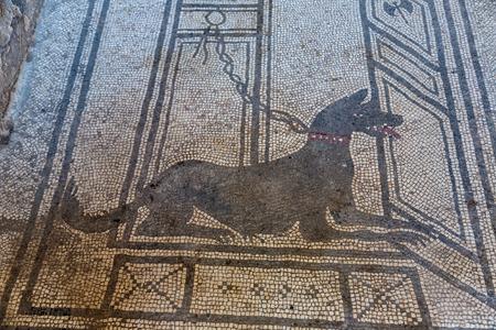 79BC 美しい夏の日にイタリア ・ ヴェスヴィオ火山の噴火によって破壊されたポンペイ市黒モザイク犬 写真素材