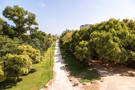 Turia gardens in Valencia in a summer day