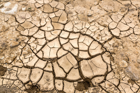 Dry land and cracked ground background in a summer day Stock Photo