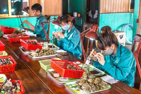 HALONG, VIETNAM - JUNE 17, 2018: Pearl implantation at Pearl farm in Halong bay, Vietnam in a summer day Редакционное