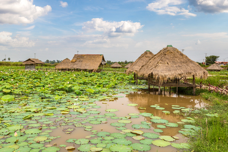 Lotus farm near Siem Reap, Cambodia in a summer day 版權商用圖片 - 122665934