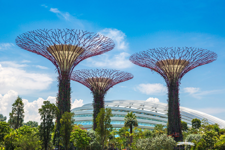 SINGAPORE - JUNE 23, 2018: The Supertree Grove at Gardens by the Bay and Greenhouse in Singapore near Marina Bay Sands hotel at summer day
