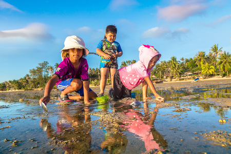 PHANGAN, THAILAND - MARCH 29, 2018: Children clams harvested on Koh Phangan island, Thailand in a summer day Editorial