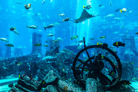 DUBAI, UAE - JUNE 26, 2018: Lost chambers - Large aquarium in Hotel Atlantis in Dubai, United Arab Emirates