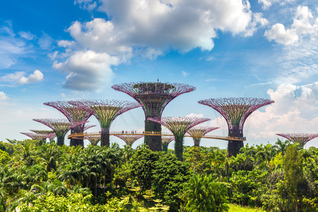 SINGAPORE - JUNE 23, 2018: The Supertree Grove at Gardens by the Bay in Singapore near Marina Bay Sands hotel at summer day Editorial