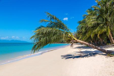 Tropical beach with palm trees on Koh Samui island, Thailand in a summer day 版權商用圖片 - 122670193