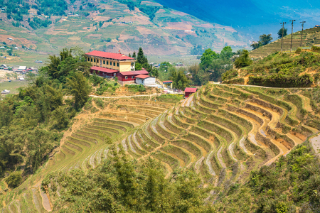 Panoramic view of Terraced rice field in Sapa, Lao Cai, Vietnam in a summer day Redakční