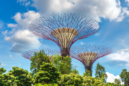 SINGAPORE - JUNE 23, 2018: The Supertree Grove at Gardens by the Bay in Singapore near Marina Bay Sands hotel at summer day Redakční