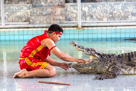 PATTAYA, THAILAND - MARCH 29, 2018: Crocodile show in Pattaya, Thailand in a summer day