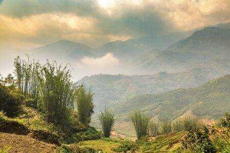 Panoramic view of Terraced rice field in Sapa, Lao Cai, Vietnam in a summer day 免版税图像
