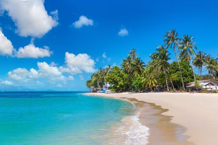 Tropical beach with palm trees on Koh Samui island, Thailand in a summer day