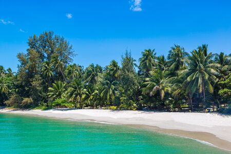 Tropical beach with palm trees on Koh Samui island, Thailand in a summer day Фото со стока