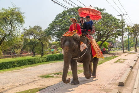 AYUTTHAYA, THAILAND - MARCH 22, 2018: Tourists riding on an elephant in the ancient city Ayutthaya, Thailand in a summer day Zdjęcie Seryjne - 124999671