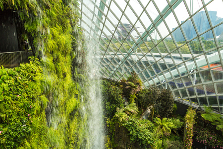 SINGAPORE - JUNE 23, 2018: Waterfall in the Conservatory Cloud Forest Dome in Singapore at summer day 報道画像