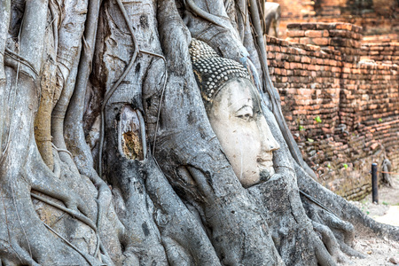 Ayutthaya Head of Buddha statue in tree roots, Wat Mahathat temple, Thailand in a summer day Redakční