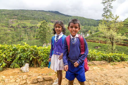 Boy and girl Schoolchildren at theTea plantations in Nuwara Eliya, Sri Lanka